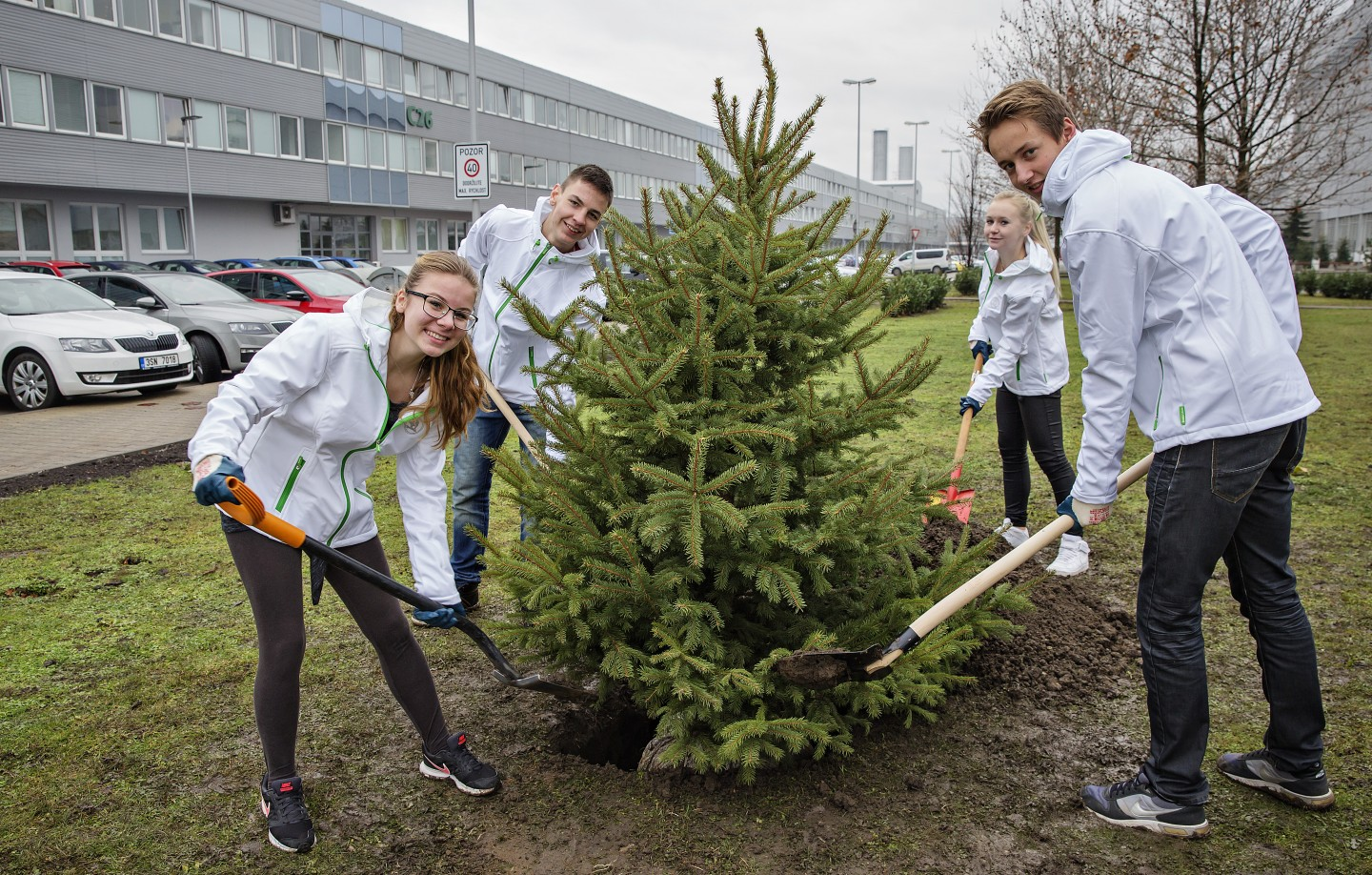 Tree party: Staff at Mladá Boleslav plant ŠKODA's 500,000th tree, a silver spruce. (Photo: ŠKODA AUTO a.s.)