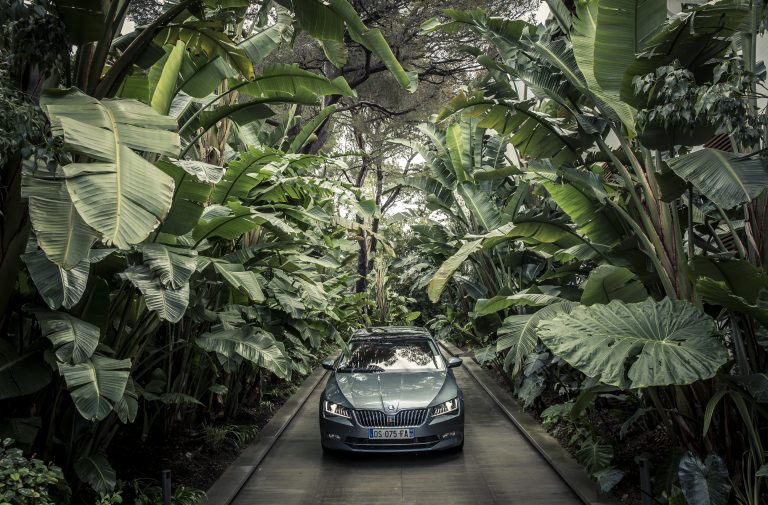Like a jungle: From inside the ŠKODA Superb, you feel as if you are on safari in Maxová's summer estate garden.