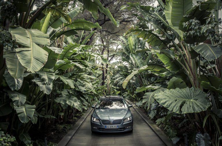 Jako v džungli: při pohledu z kabiny Superbu máte v zahradě letního sídla Terezy Maxové pocit jako na safari.