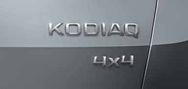 As strong as a bear: SKODA's large SUV is called Kodiaq