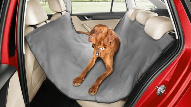 Just made for dog lovers: ŠKODA offers comprehensive accessories for keeping your dogs safe in the car