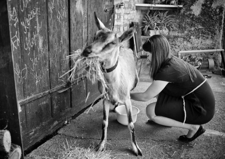 The young, successful musician has to manage many things before the concert. For example, she still has to milk the goat.