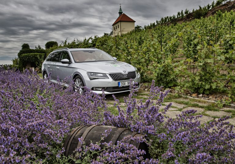 Czech wine was long underestimated but is now in vogue. Just as ŠKODA's cars: Within a quarter century, ŠKODA has evolved from a regional manufacturer into a dynamic automotive manufacturer on the international stage.