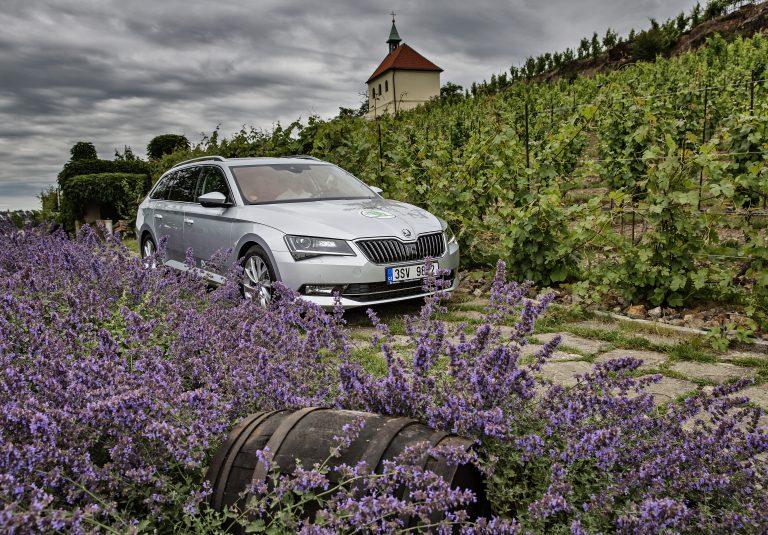 České víno bylo po dlouhou dobu podceňováno, a dnes je v módě. Stejně jako automobily značky ŠKODA. Během čtvrtstoletí se ŠKODA vyvinula z regionálního výrobce v dynamickou automobilku mezinárodního formátu.