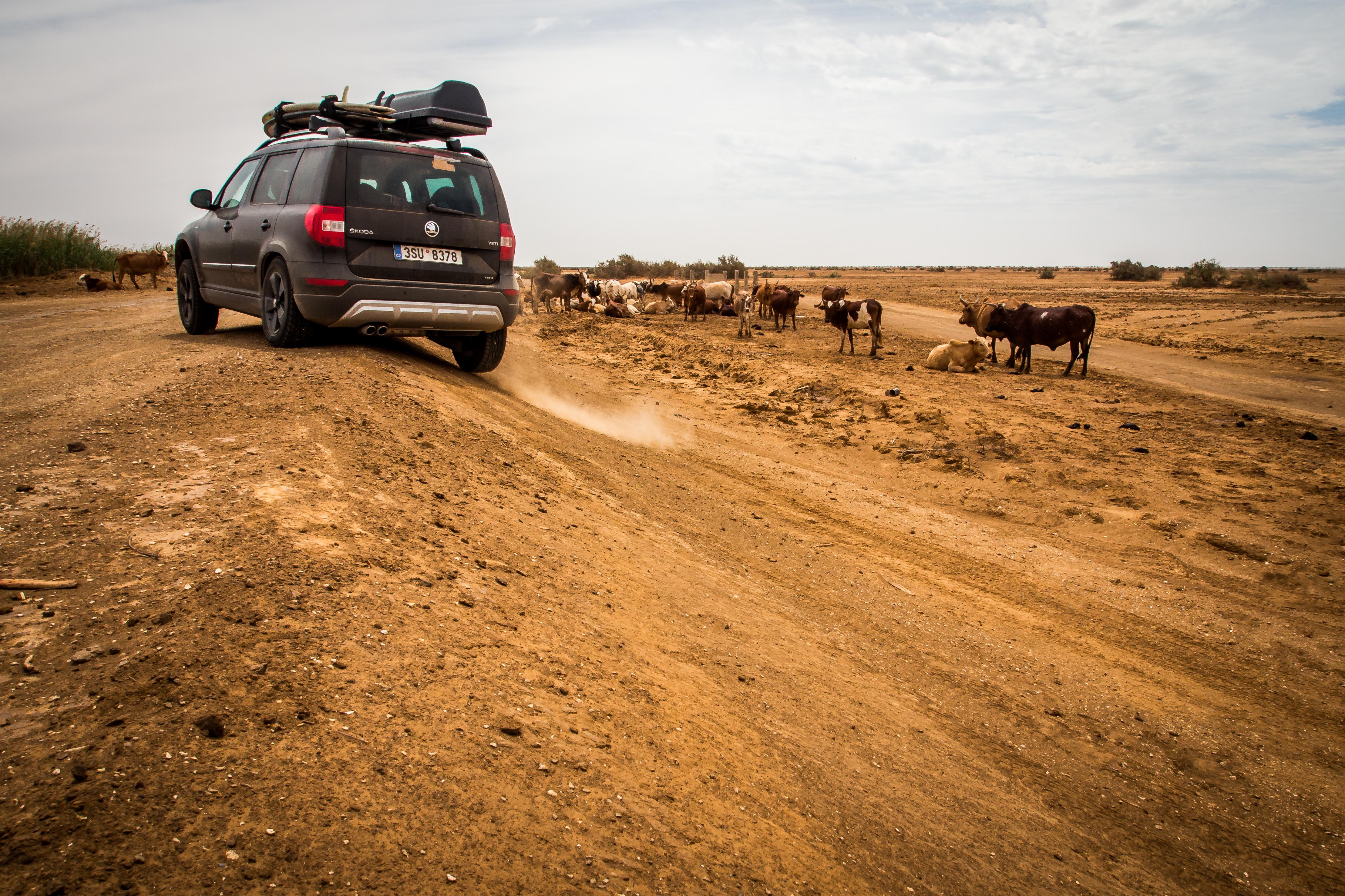 mauritánie Čína datování cizinců špióni