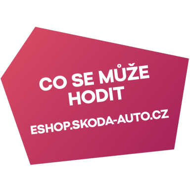 co_se_muze_hodit