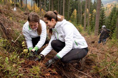 11 let projektu ŠKODA Stromky: 730 000 nově vysazených stromů