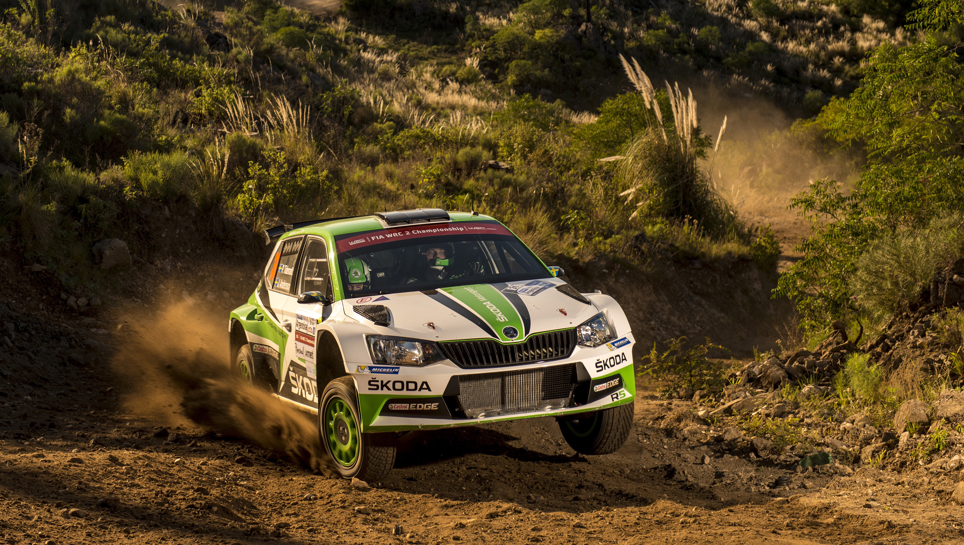 Image result for rally skoda R5 2017 argentina