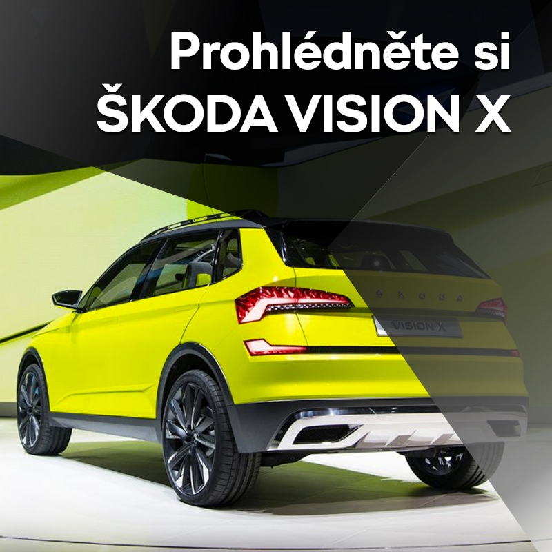 Vision_X_cz