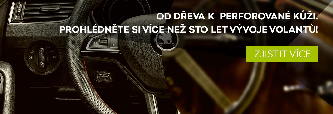 steering_wheel_cz