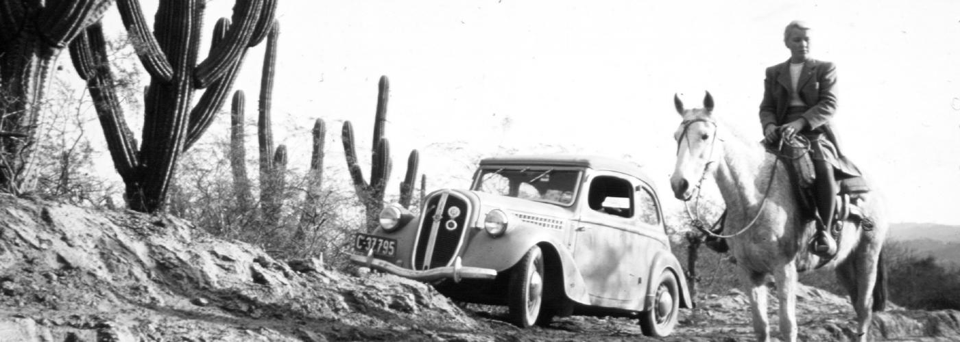 Elstners-Eva-Cactus-1