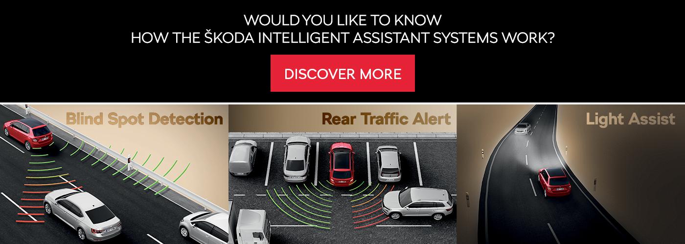 assist-systems-link-en