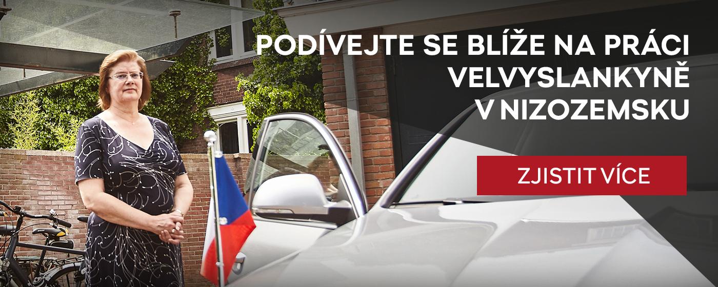 Banner-Jana-Reinisova-cz