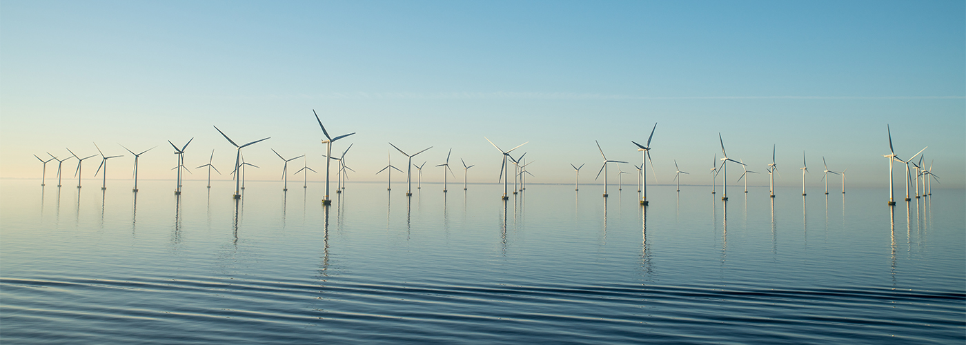 wind-mills-water-plants-sustainability