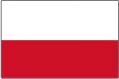 palubni-kamery-polsko2