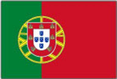 palubni-kamery-portugal