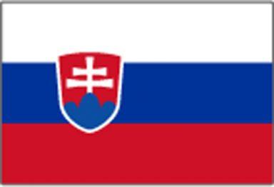palubni-kamery-slovensko2